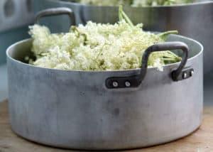erbe - succo di sambuco