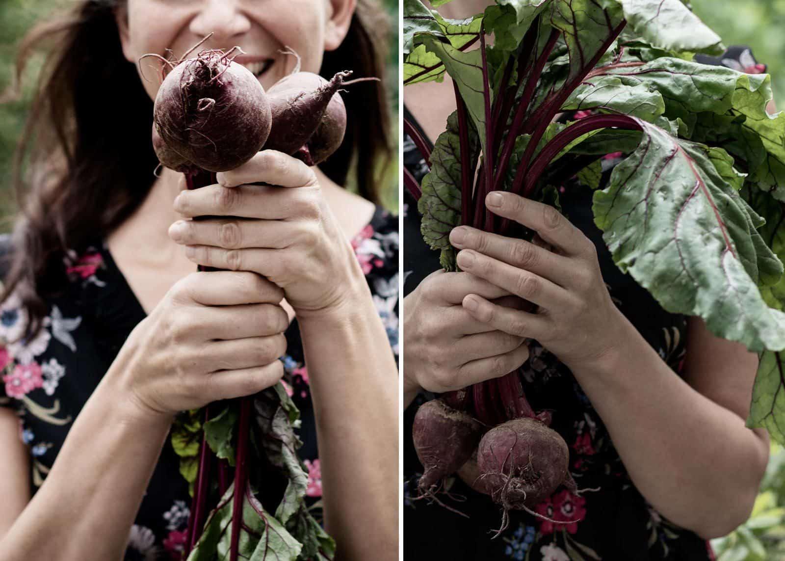 Rote - Bete - Blätter Salat